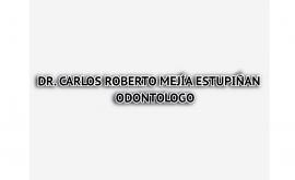 Dr CARLOS ROBERTO MEJÍA ESTUPIÑAN